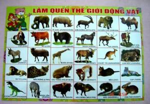 Trang làm quen thế giới động vật